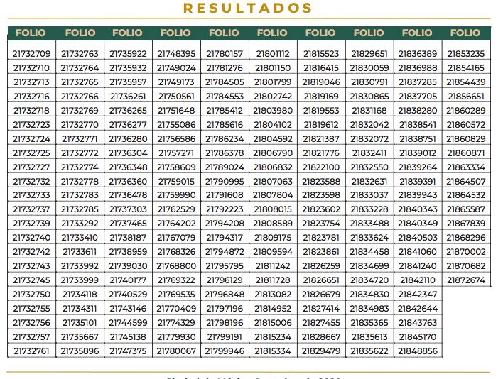 Resultados Beca de capacitación Programa de Iniciación a la Investigación UNAM-2020